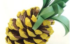 Pines — Cones or Apples?