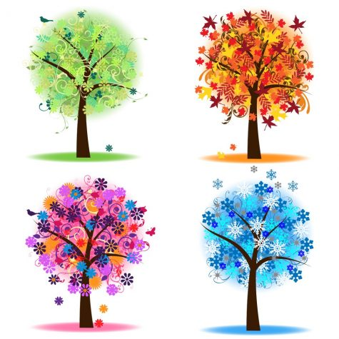 4 trees that represent the seasons