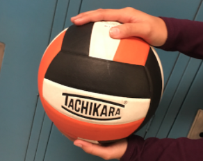 Volleyball Tournament Returning Next Week