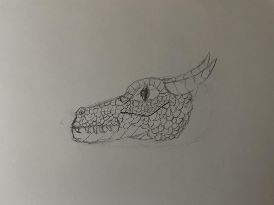 Drawing A Dragon head. Join you Must